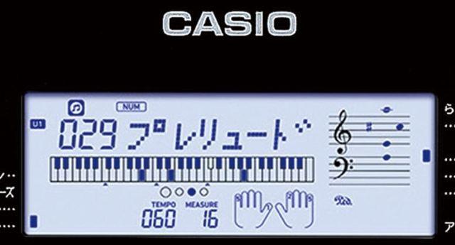 casiok2.JPG